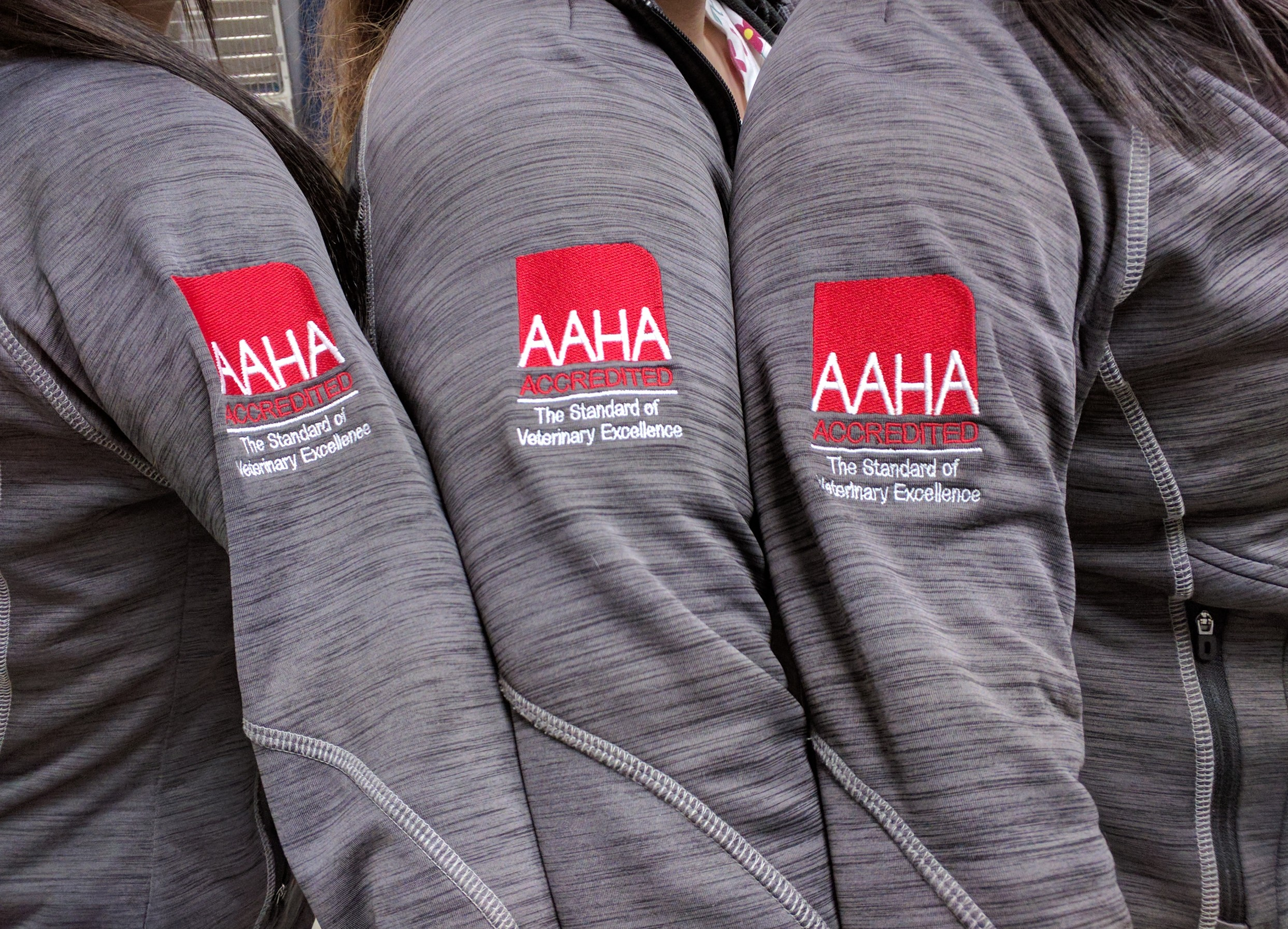 We are AAHA Accredited!